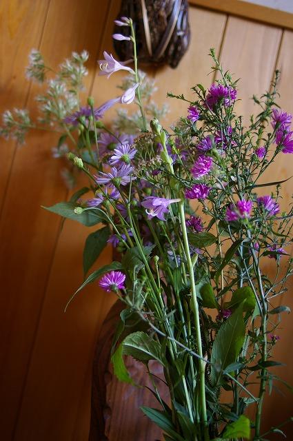 仏花に庭の花を