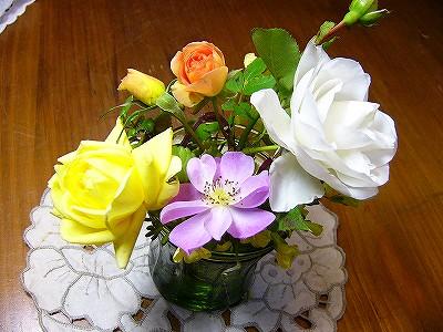 今年最後のバラたち