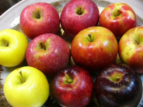 県産りんご
