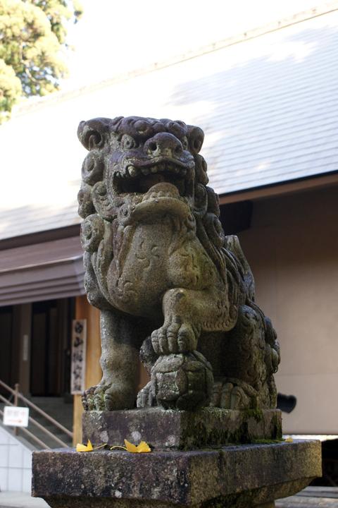 091123_Nagataki_08