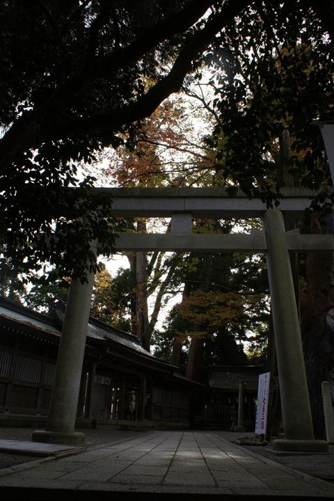 091124_Shirayama_06
