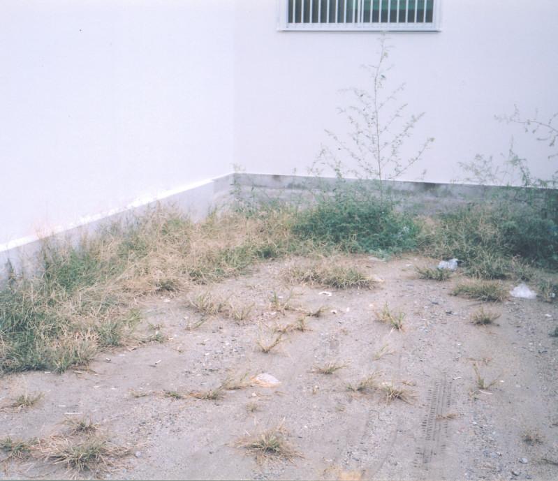 tubu (5)