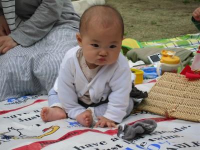 0329piyokochan