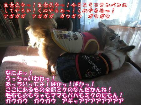 Aブログ09177