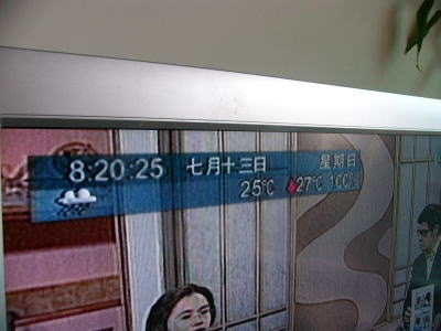 momo5339.jpg