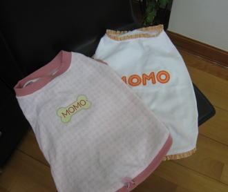 momo5455.jpg