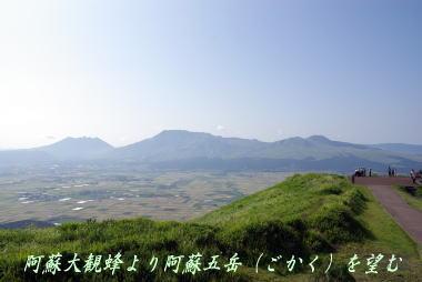 momo5494.jpg
