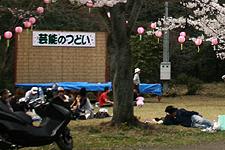 2007040202.jpg