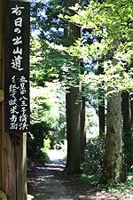 2007071109.jpg