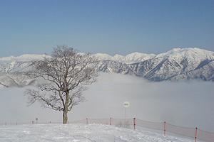 2008031701.jpg
