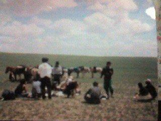 草原のど真ん中での昼食
