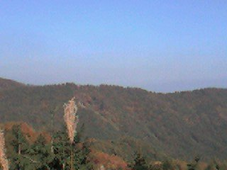 ススキと紅葉に染まる美ヶ原