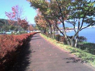 諏訪湖の自転車道