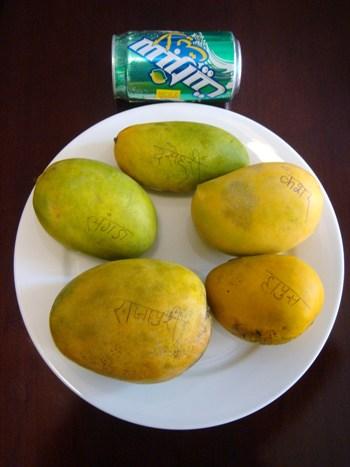 ムンバイで出回るマンゴー