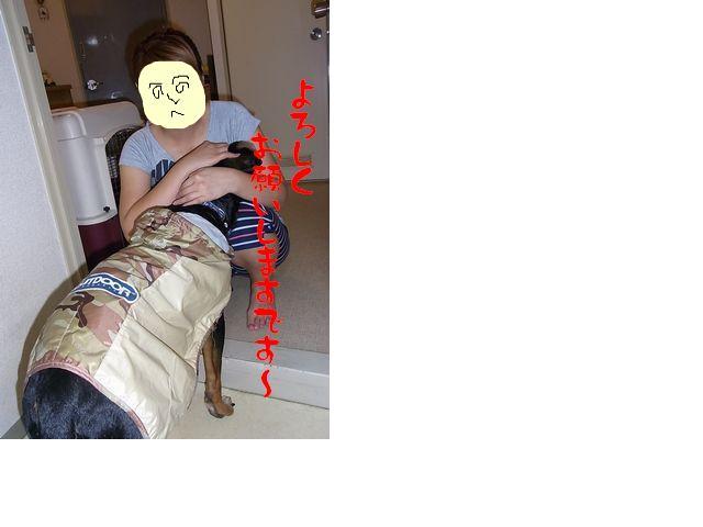 snap_huzoroi06_200910220374.jpg