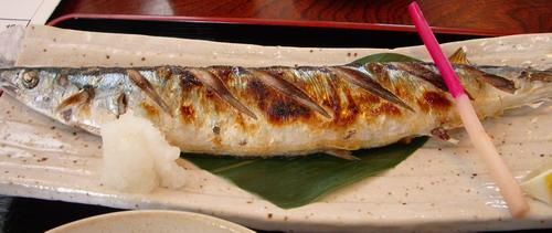 焼き秋刀魚@みなと寿司