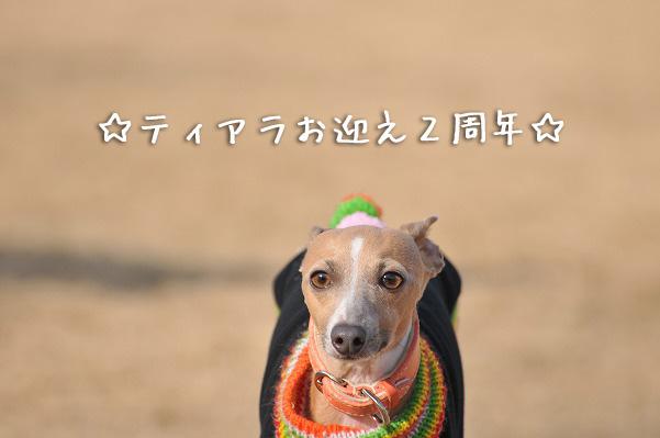 100103走り初め (38)