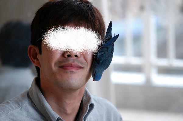 さようなら小波 (6)