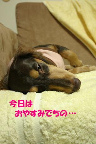 20071013亀岡オフ会098