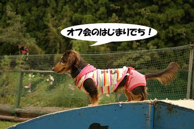 20071013亀岡オフ会00908のコピー