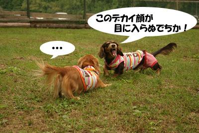 20071013亀岡オフ会02704のコピー