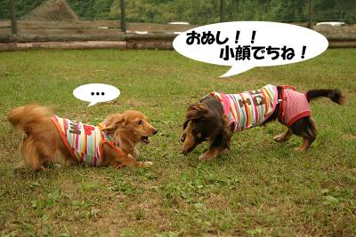 20071013亀岡オフ会02805のコピー