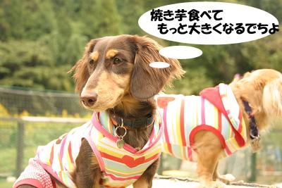 20071013亀岡オフ会03409のコピー