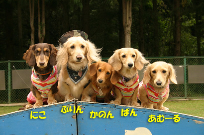 20071013亀岡オフ会06808のコピー