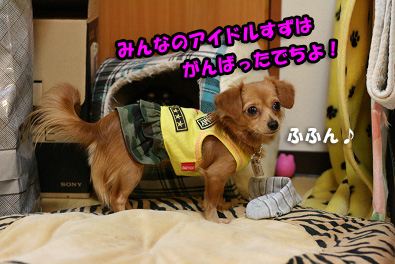 2007 10 27 わんママ家 109blogのコピー