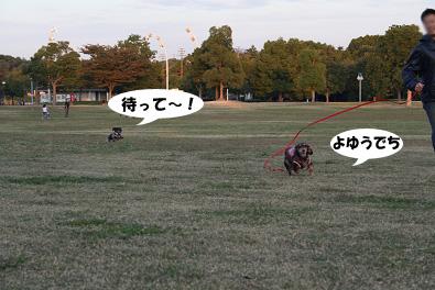 2007 10 31 ブロッサム&鶴見緑地 124blogのコピー
