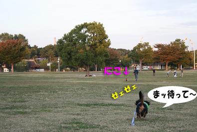 2007 10 31 ブロッサム&鶴見緑地 137blogのコピー
