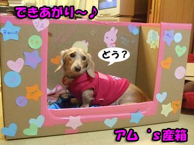 2007 11 04 お産の準備 056blogのコピー