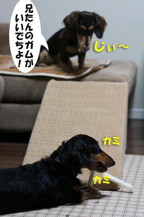 2007 11 05 ハピスロモデル 153blogのコピー