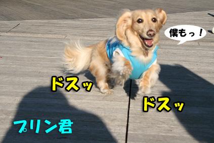 2007 11 03 箕面オフ会 153b14のコピー