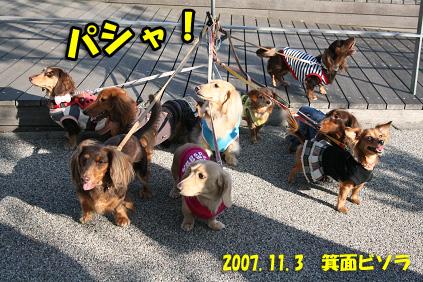 2007 11 03 箕面オフ会 114b01のコピー