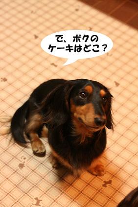 2007 11 28 ikko誕生日 131blog01のコピー