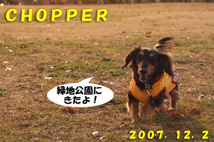 2007 12 02 出産と誕生日 018blog01のコピー