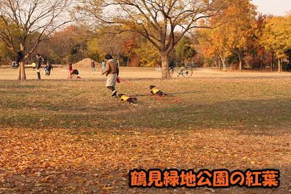 2007 12 02 出産と誕生日 036blog04のコピー