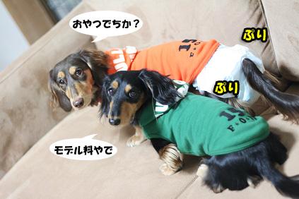 2007 12 12 冬物新作1 034blog02のコピー