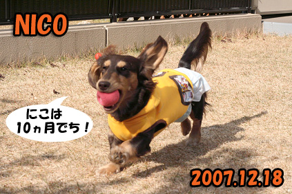 2007 12 14 忘年会 257blog04のコピー