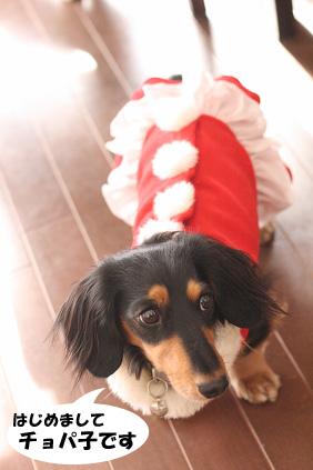 2007 12 19 クリスマス会inワンバサ 003blog01のコピー