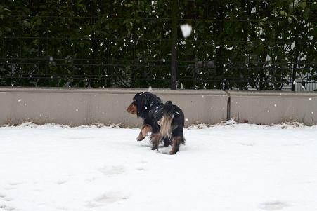 2008 02 09 雪遊び blog17