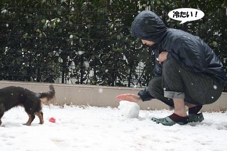 2008 02 09 雪遊び blog06のコピー