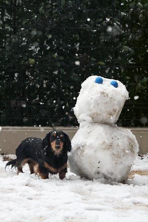 2008 02 09 雪遊び blog13