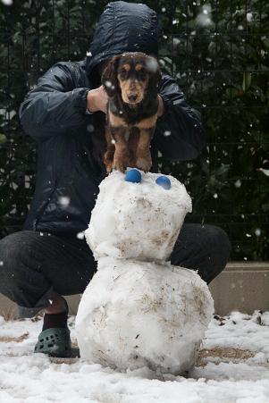 2008 02 09 雪遊び blog14
