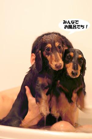 2008 02 09 雪遊び blog16のコピー