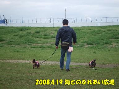 2008 04 19 海ふれ blog01のコピー