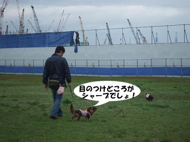 2008 04 19 海ふれ blog02のコピー