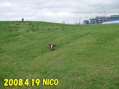 2008 04 19 海ふれ blog05のコピー