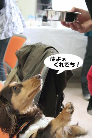 2008 04 20 吹田オフ会 blog06のコピー